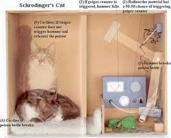El gato de Schrödinger (Física Cuántica)
